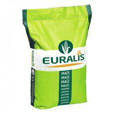 купить Семена кукурузы, Euralis, ЕС Сириус, ФАО 200
