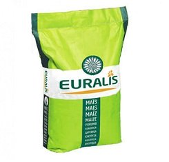 Семена гибрид подсолнечник Евралис Белла