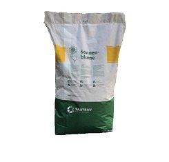 купить Семена подсолнечника, Saatbau, КС 108, под гранстар (QS 108)