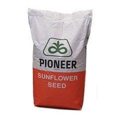 купить Семена подсолнечника, Пионер, П63ЛЛ01 (P63LL01)