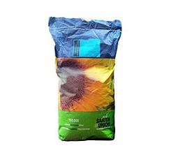 Семена подсолнечника ПАРАИЗО 102КЛ (PARAISO 102 CL)