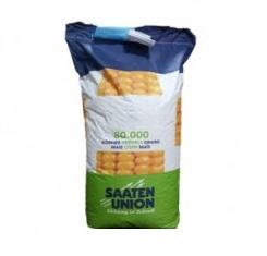 купить Семена кукурузы ОС 430, ФАО 440