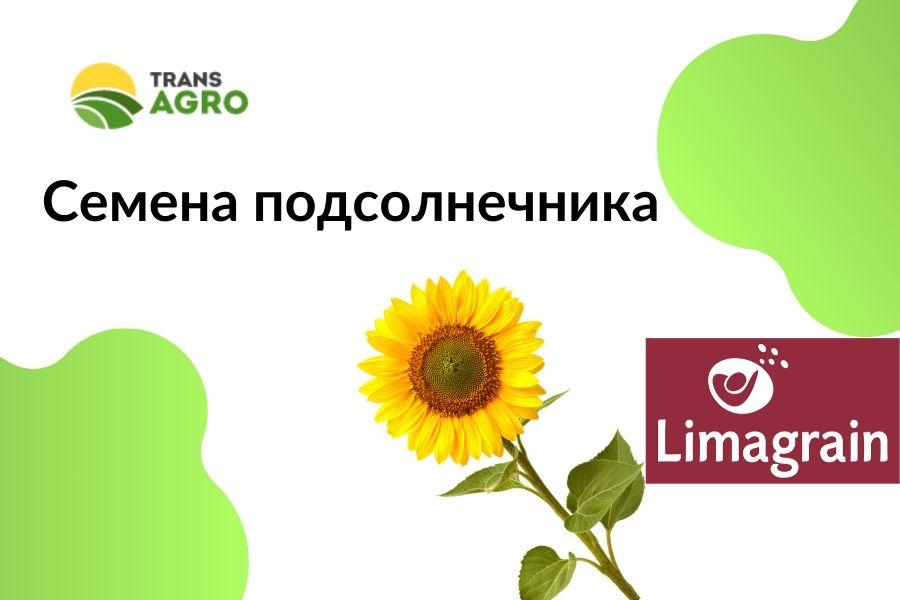 купить семена подсолнечника Limagrain (Лимагрейн)