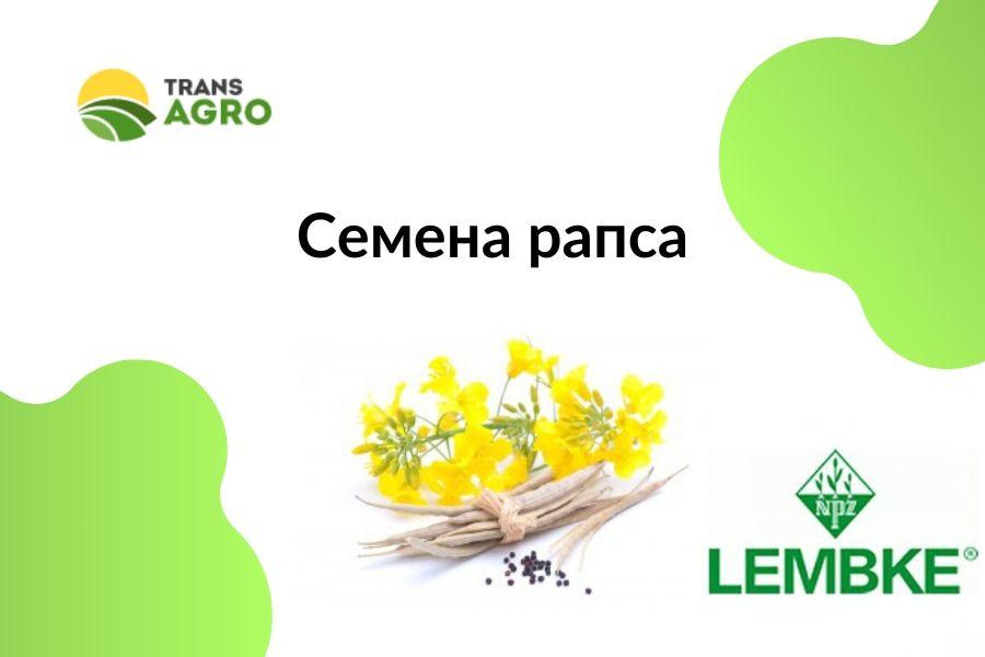 купить семена рапса Лембке (Lembke)