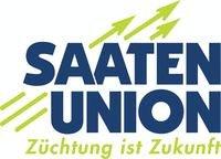 семена кукурузы saten-union купить