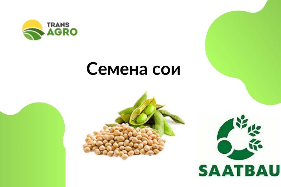 купить семена сои Saatbau (Заатбау)