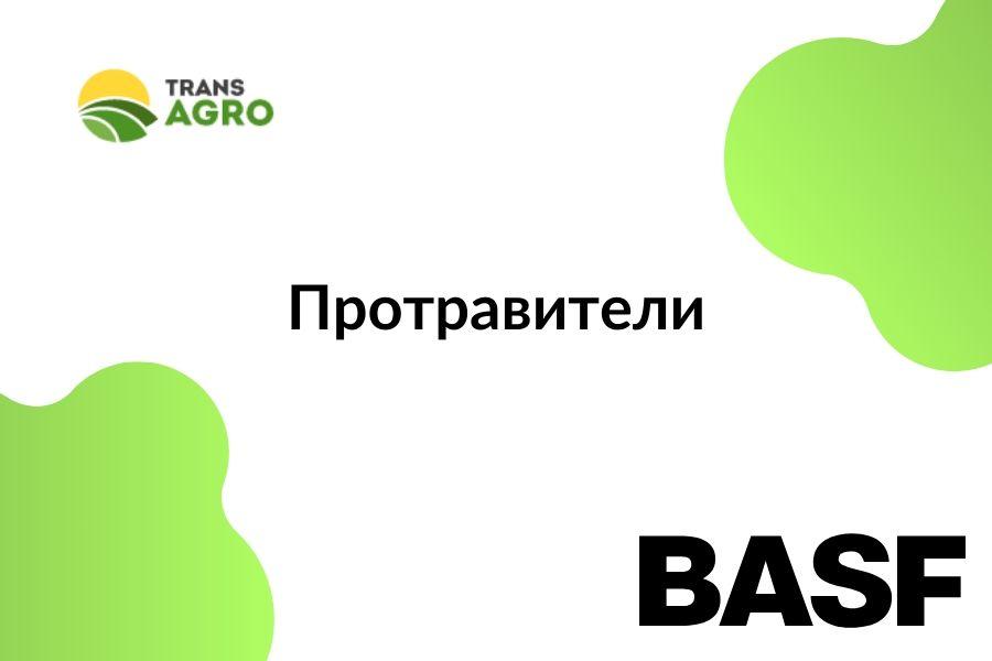 купить протравитель BASF