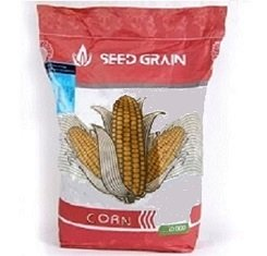Семена кукурузы, Seed Grain, SG34N95, ФАО 350 (1)