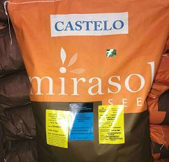 Семена подсолнечника, Mirasol Seed, Бонасол JMR OR7
