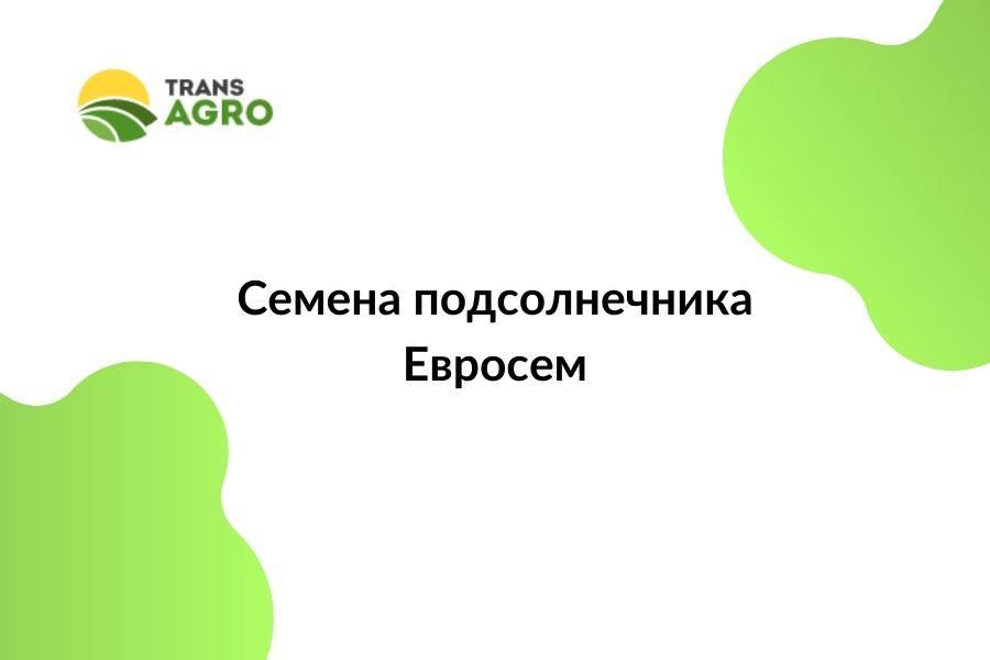 купить семена подсолнечника Евросем