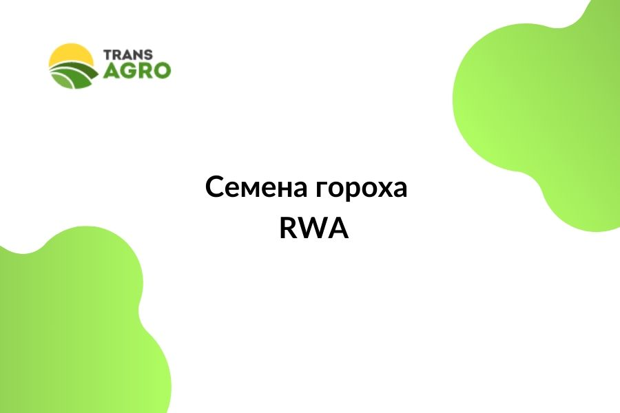 купить семена гороха RWA