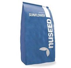Купить Семена подсолнечника, Nuseed, Импакт, под Евролайтинг