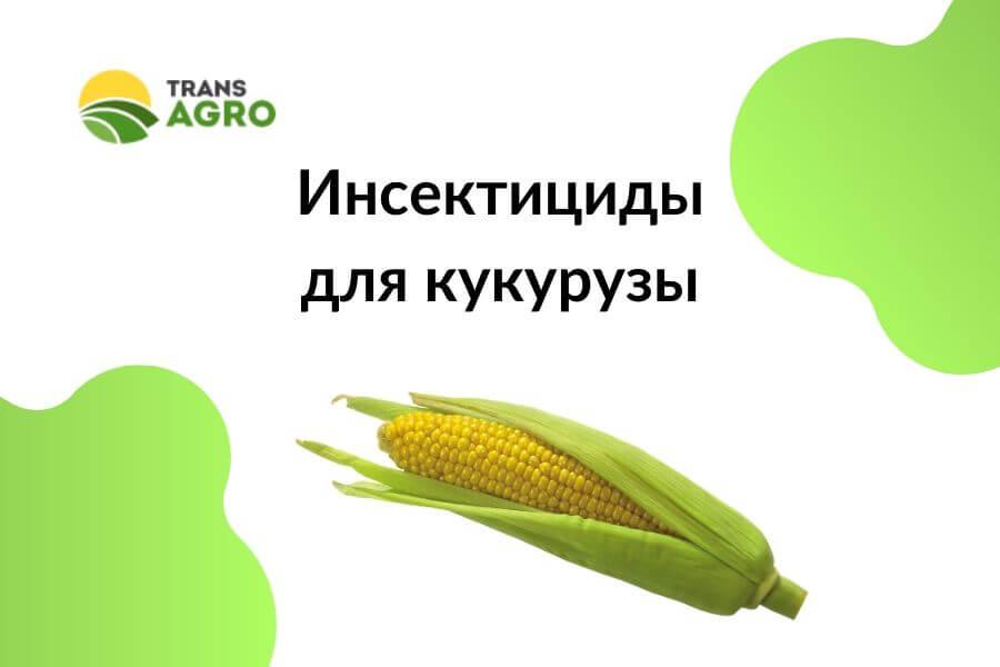 купить Инсектициды для кукурузы
