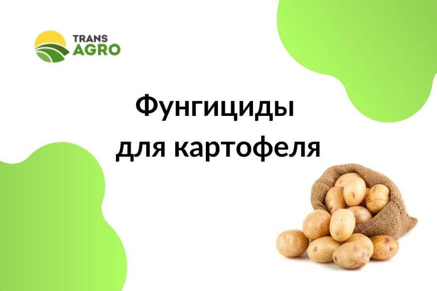 купить фунгициды для картофеля в украине