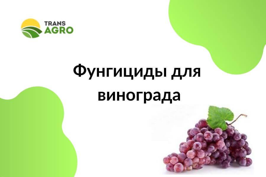купить фунгициды для винограда в днепре