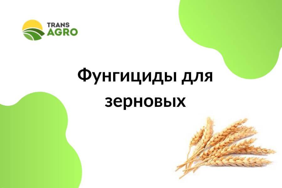 купить фунгициды для зерновых в украние
