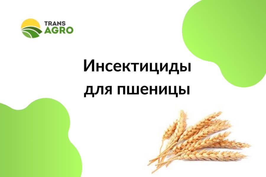 купить инсектициды для пшеницы